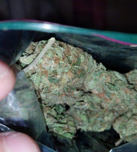 Buy OG Kush Cannabis Online Cheap