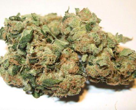 Buy Super Sour Diesel Marijuana online