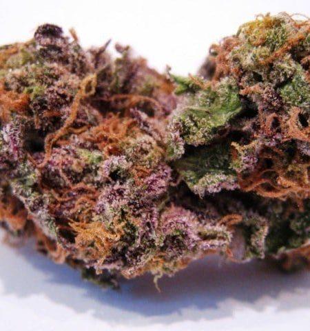 Order Buy Cherry Gorilla Marijuana online