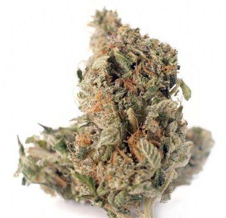 Buy Pink Bubba (AAAA) Cannabis Online