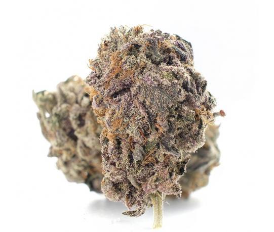 Buy Purple Dragon cannabis (AAAAA)