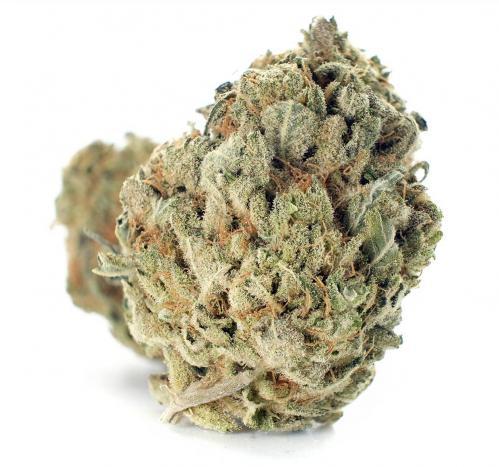 Buy Romulan Cannabis online